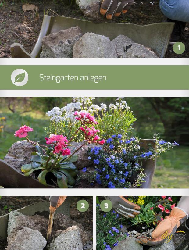 Steingarten anlegen anleitung f r mini steingarten - Steingarten anlegen anleitung ...