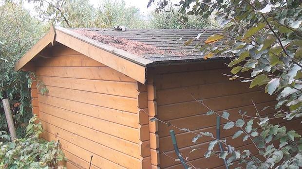 Gartenhaus streichen - Status Quo