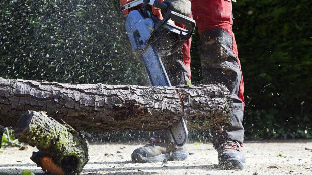 Schutzausrüstung für Baumfäller