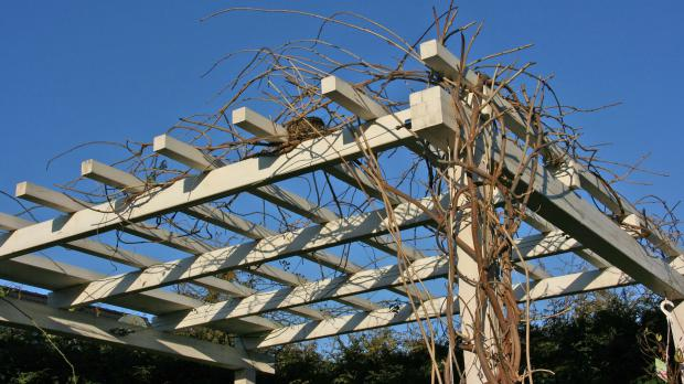 Dachkonstruktion für Begrünung