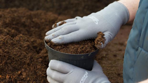 Pflanztopf mit Erde füllen