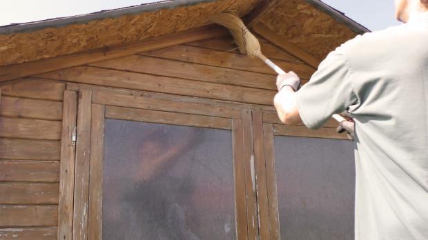 Gartenhaus von Verunreinigungen befreien
