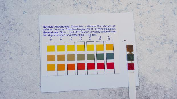 Der pH-Wert des Bodens