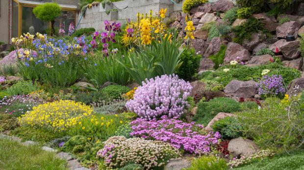 Größer dimensionierte Steingartenanlage