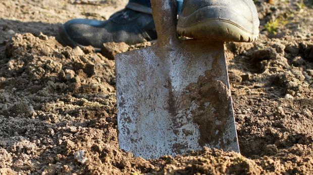 Bodenverbesserung: Gartenerde aufbessern