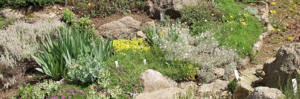 Ein Steingarten