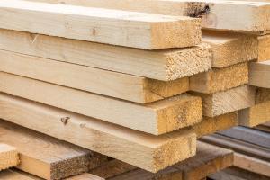 Baustoff Holz: Das Beste, was der Wald zu bieten hat