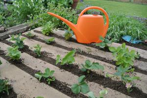 Für Sparfüchse: 5 DIY-Ideen zur Gartengestaltung
