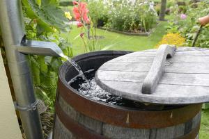 Regenwassernutzung: Regenwasser sammeln und einsetzen