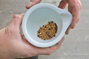 Hartschalige Samen zum Keimen bringen