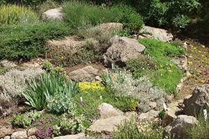 Der Steingarten - Solide Gartengestaltung
