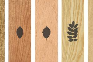 Parkett Holzarten im Überblick