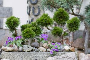 Steingarten Gestalten U2013 Tipps Für Das Eigene Steinbeet