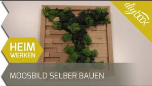 Embedded thumbnail for Moosbild selber bauen