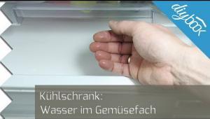 Embedded thumbnail for Wasser im Kühlschrank – Die Lösung!